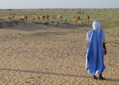 Quick Look: Mauritania