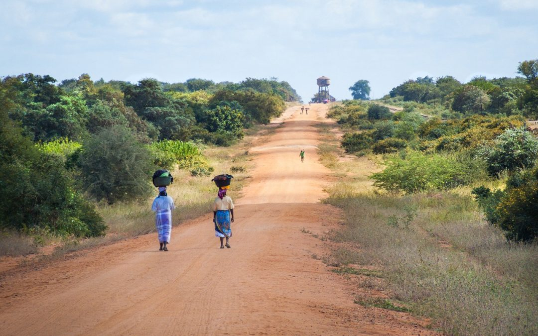 Mozambique Outlook Report