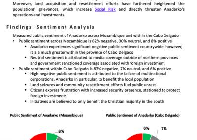 Social Risk Investigation: Cabo Delgado