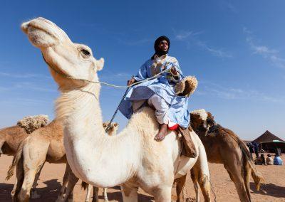 Social Risk Mitigation: Algeria