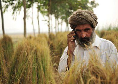 Social Risk Action Plan: India