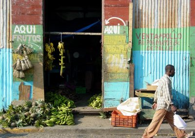Social Risk Action Plan: Dominican Republic